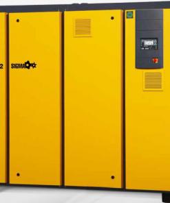 DSD DSDX Compressori a vite